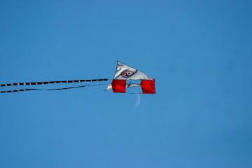 F95 Düsseldorf Kite and Moon