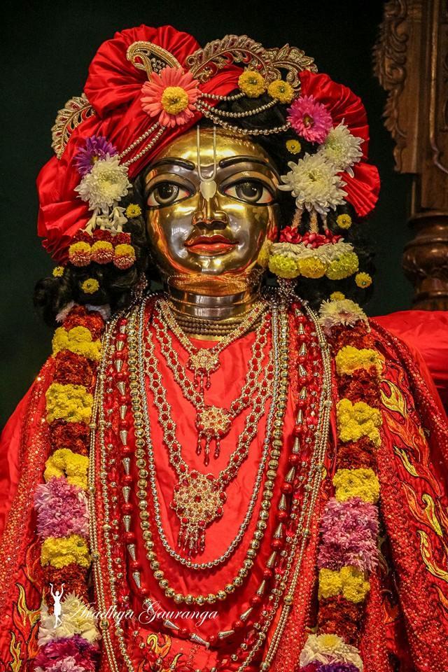 ISKCON Mayapur Deity Darshan 06 Jan 2015 (12)