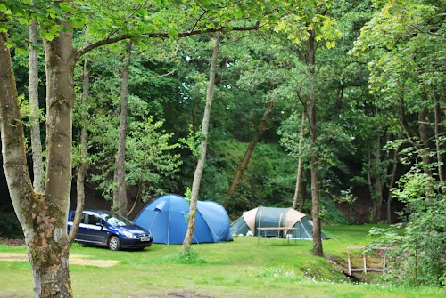 Burnside Caravan Site at Burnside Caravan Site