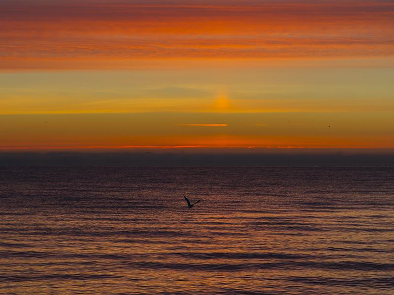 Last sunrise 2014 (11).png