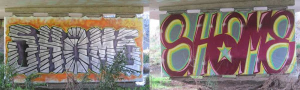 shame street art
