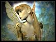 Fairy Sight