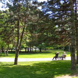 Parc Georges Bazin's profile photo