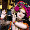 Nimai Krishna Dey - photo