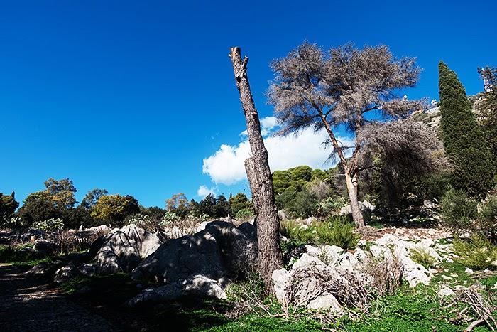 Palermo37.jpg