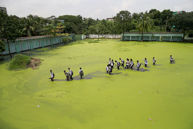 Bangladeshi school children walk through a flooded field as they return home after school at Demra, 16 August 2017. The mix of rainwater and toxic waste from industries has turned the water green. Photo: Suvra Kanti Das / ZUMA / REX Shutterstock