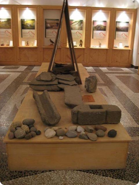 museo-storia-naturale-lunigiana
