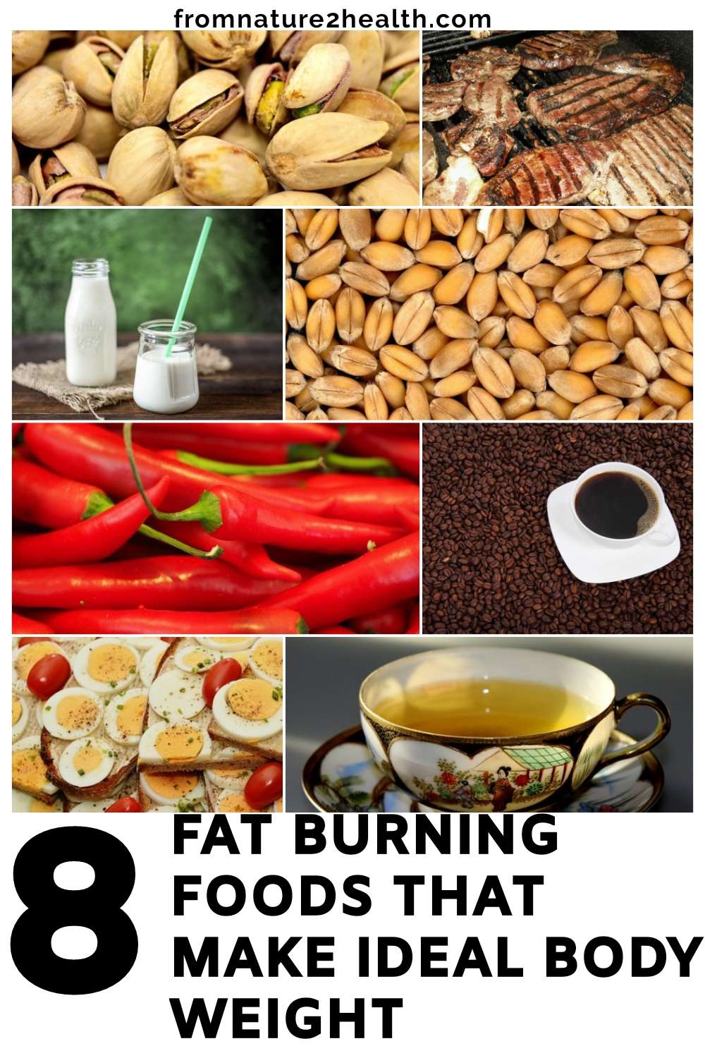 8 fat burning foods that make ideal body weight - from