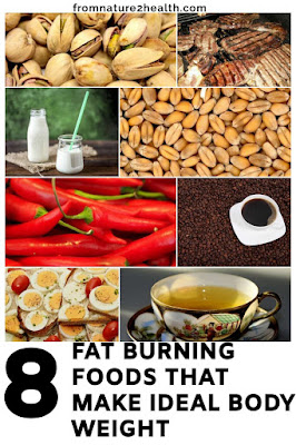 Chili, Coffe, Egg, Green Tea, Lean Meat, Nuts, Whole Grain is Burning Foods That Make Ideal Body Weight