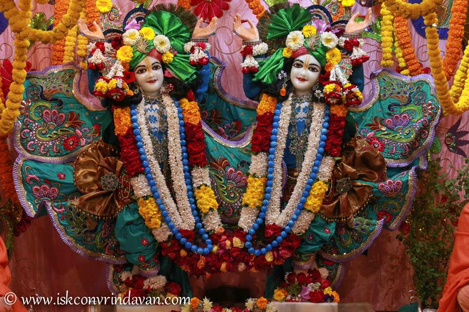 ISKCON Vrindavan Sringar Deity Darshan 15 Jan 2016  (3)
