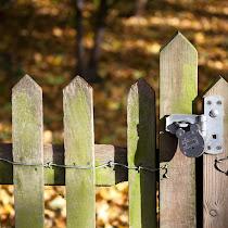 2010_11_06-10_01_21-Autumn0028.jpg