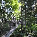 2009_10_02_Treetop_Walk_UBC_Botanical_Garden