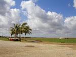 Everglades, Florida  [2002]