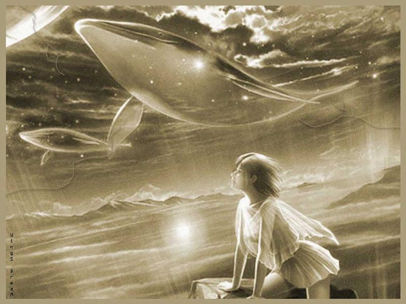Celestial Whales, Magick Lands 1