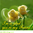 Sunitha G avatar image