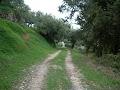 DSCN1360.jpg
