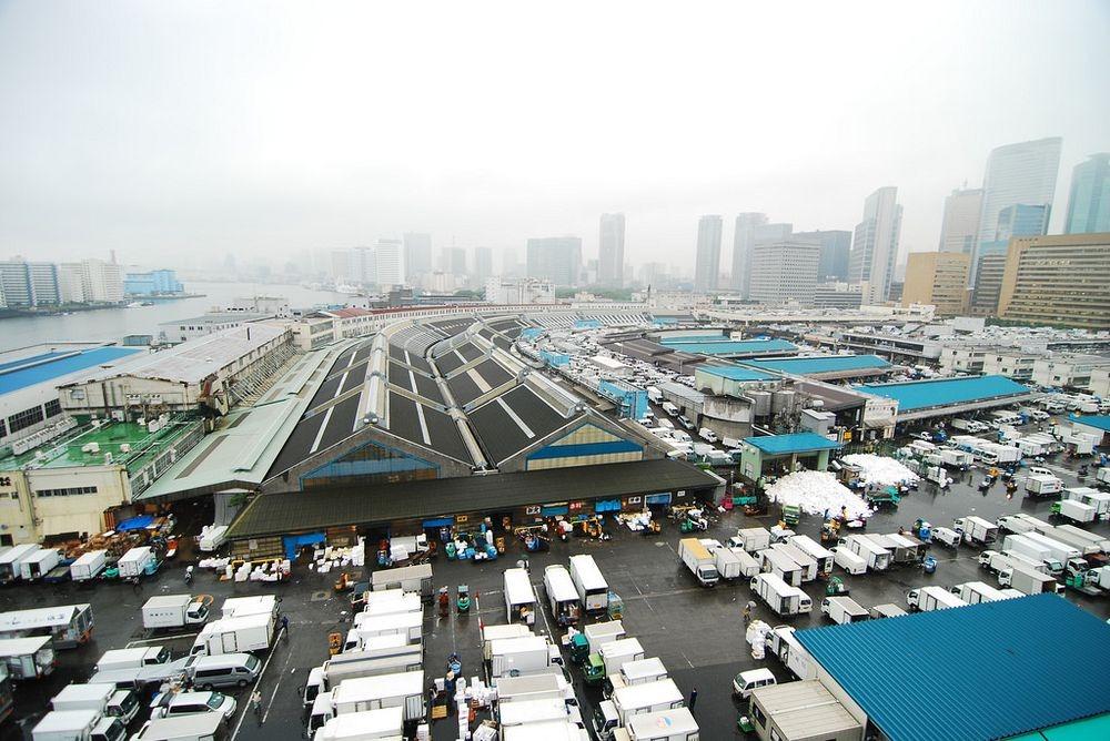tsukiji-fish-market-4