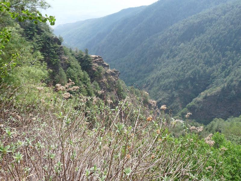Chine .Yunnan. Dali ,petite randonnée au temple de Zhong he 3 - P1170595.JPG