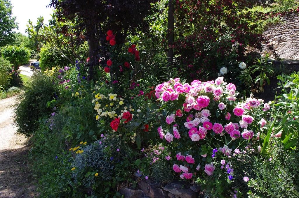 12-Flores