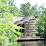 The Crosby Arboretum, Mississippi State University's profile photo