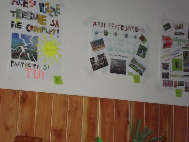 Workshop Parteneriat pt. un mediu curat - proiect educational  - 22-23 mai 2011 - DSC09803.JPG