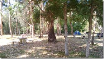 camping-pp-area-de-camping