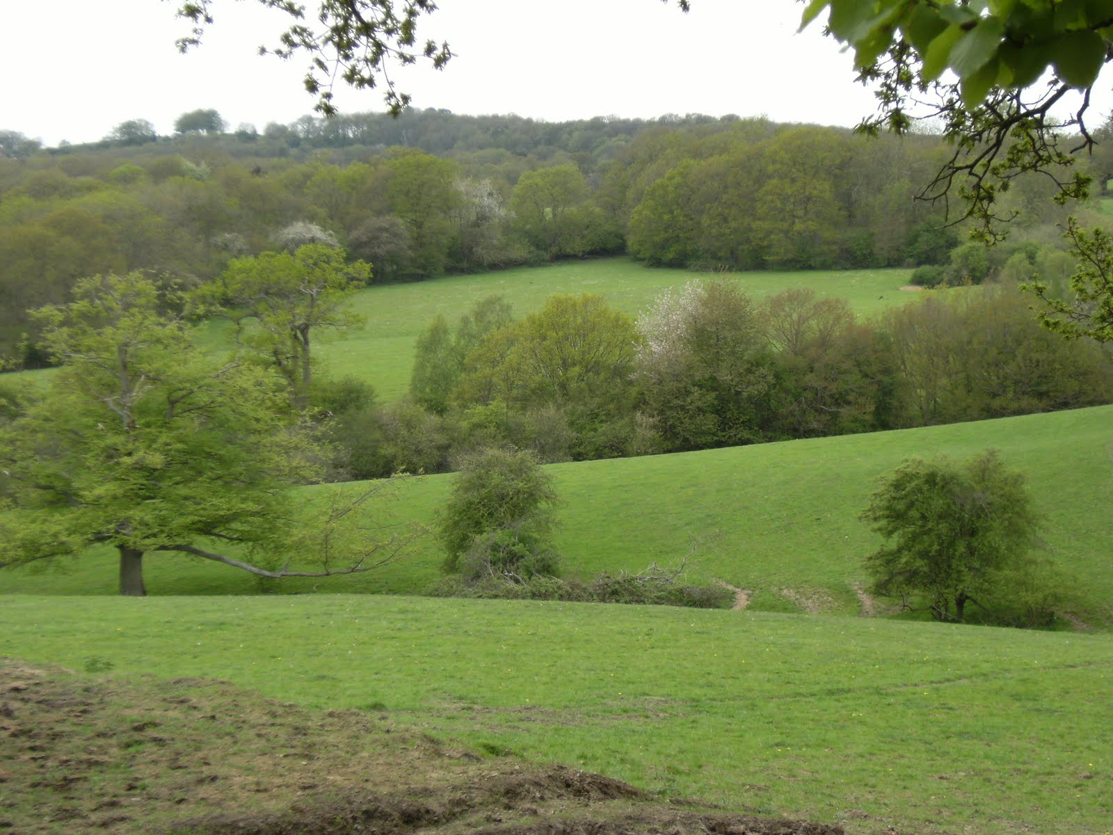 1005050010 Wealden view near Chiddingstone Hoath, spring