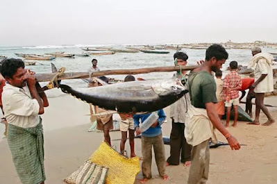Fishermen Issue with Sri Lanka