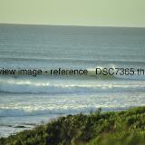 _DSC7365.thumb.jpg
