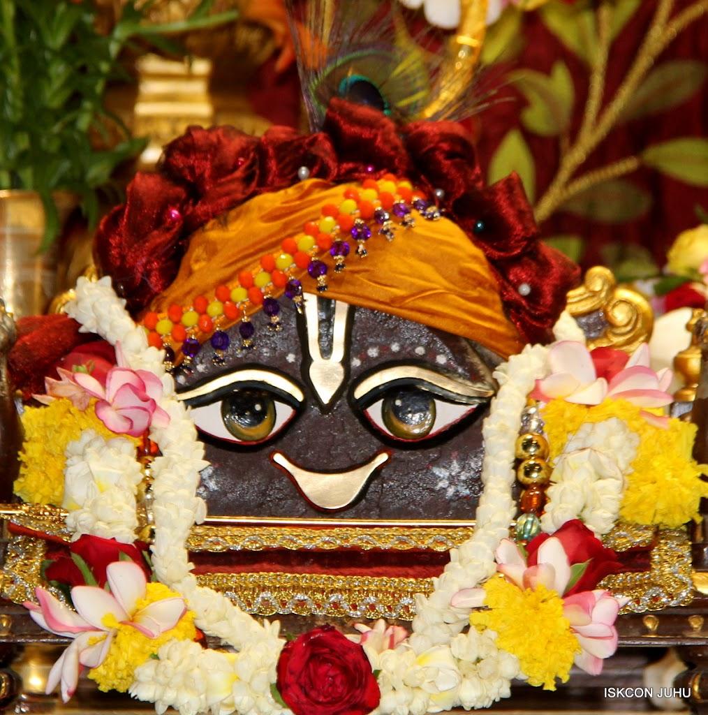 ISKCON Juhu Sringar Deity Darshan on 30th May 2016 (10)