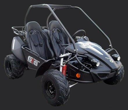 150cc GTS GT Hammerhead Twister Dune Buggy Go Cart Black