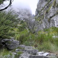 Nearing the top of Table Mountain