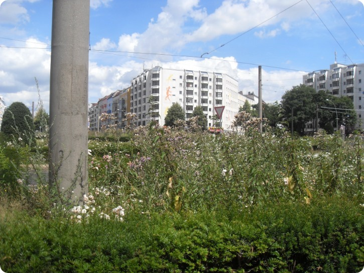 Grønne Berlin