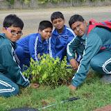 Gurukul Green Revolution (30).jpg
