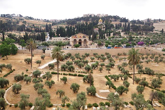 IerusalimMaslini30.JPG