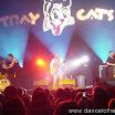 20080903 Stray Cats 080.jpg