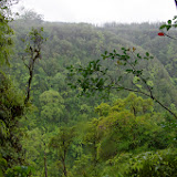 06-23-13 Big Island Waterfalls, Travel to Kauai - IMGP8850.JPG