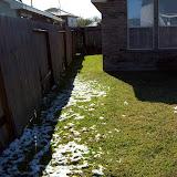Snow Day - 101_6008.JPG
