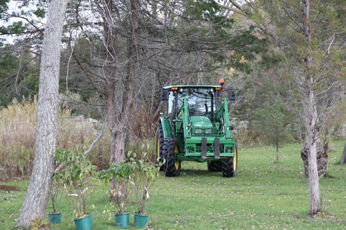 Hammo Fall Planting - Jim Murtagh - BC3G2519.jpg