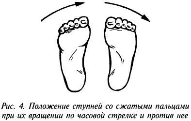 Положение ступней со сжатыми пальцами при их вращении по часовой стрелке и против нее