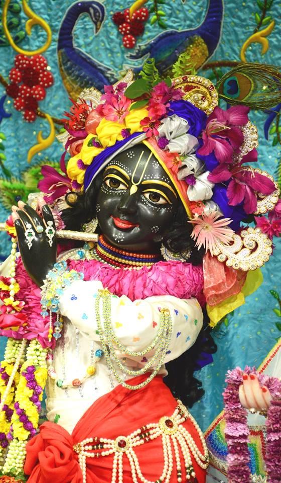 ISKCON GEV Deity Darshan 03 jan 2017 (8)