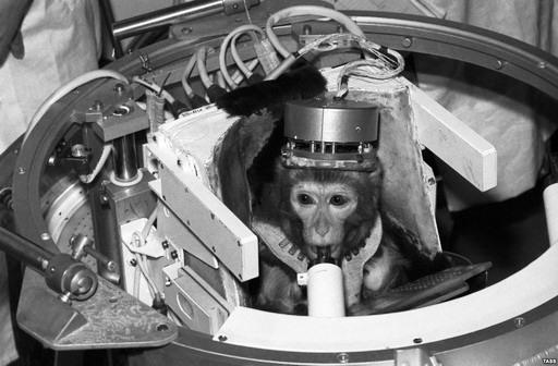 50 năm chinh phục vũ trụ của loài khỉ