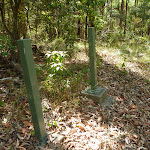 Green metal posted near Bower Bird Creek in Blackbutt Reserve (400744)
