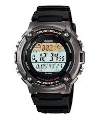 Casio Standard : CPW-500HD