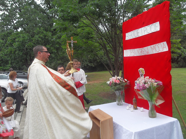 Boże Ciało 6.10.2012, PCAAA - zdjęcia B. Kołodyński - SDC14161.JPG