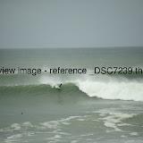 _DSC7239.thumb.jpg