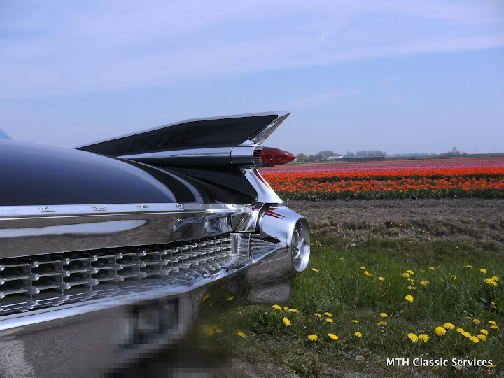 1959 Cadillac Fleetwood - BILD0727.JPG