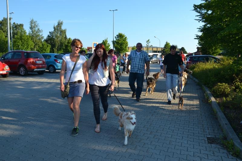 On Tour in Tirschenreuth: 30. Juni 2015 - DSC_0010.JPG