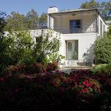 10-26-14 Dallas Arboretum - _IGP4288.JPG