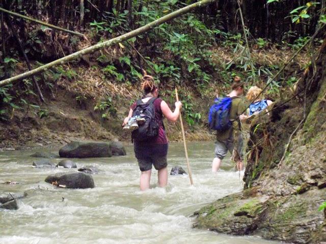 Hiking through the streams on Rajkandi Reserve Forest toward Hamham Waterfalls